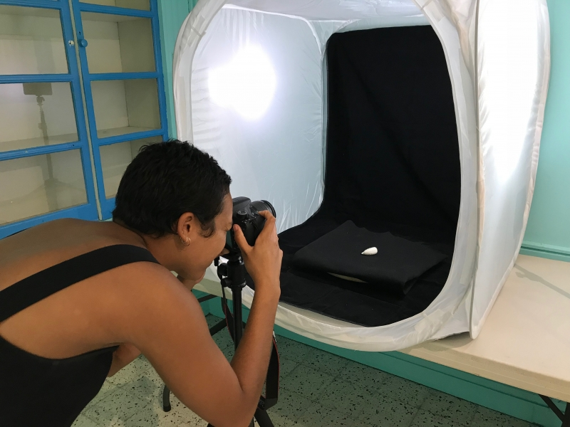 3D Photogrammetry Workshop with Brown University Students at the Barbados Museum